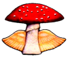 Mushroom With Angel Wings logo